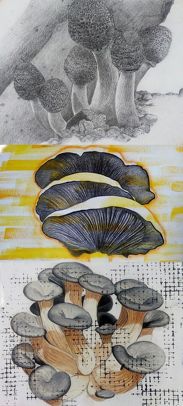 mushrooms! - by Thabiso Mokokwane, IGCSE Art student from Botswana