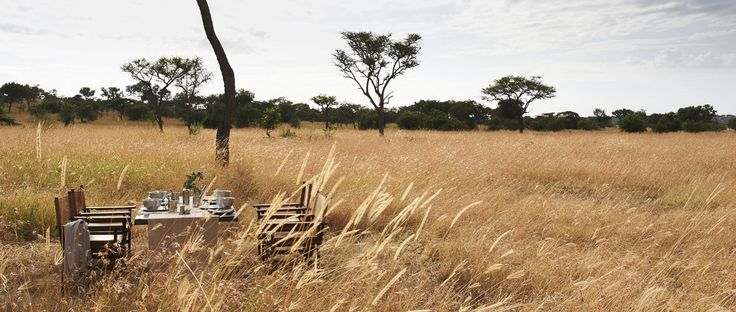 Wide open spaces is the order of the day at Singita Explore.