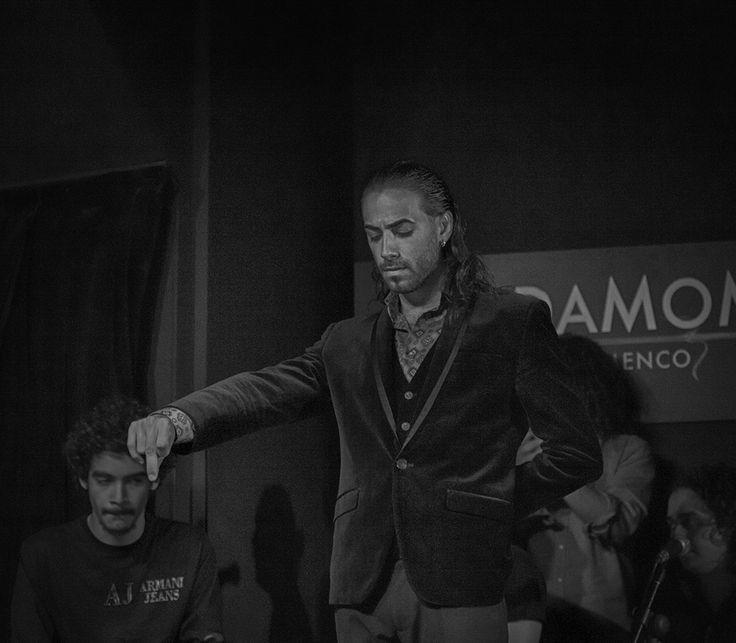El bailaor Rapico. Cardamomo Tablao Flamenco, Madrid