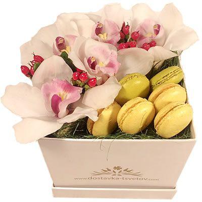 Орхидея и макаруни в шляпной коробке с доставкой по Москве http://www.dostavka-tsvetov.com/cvety-i-makaruny-v-korobke/makaruny-s-dostavkoy-po-moskve