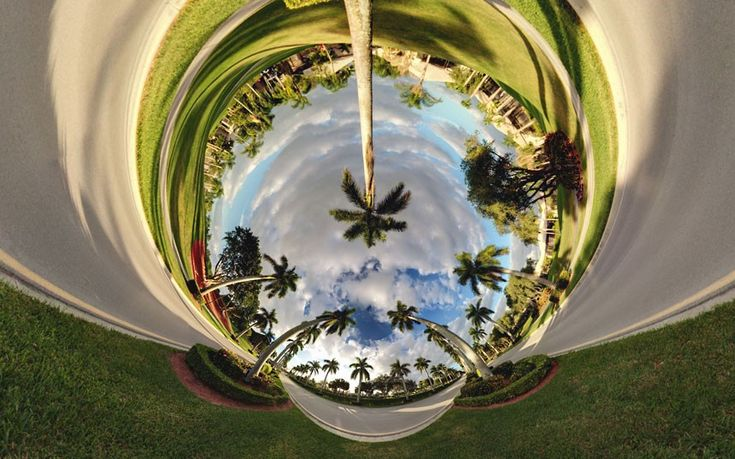 Alternate Perspectives: surreal landscape photography by Randy Scott Slavin - Palms, Florida  Picture: Randy Scott Slavin / Rex Features