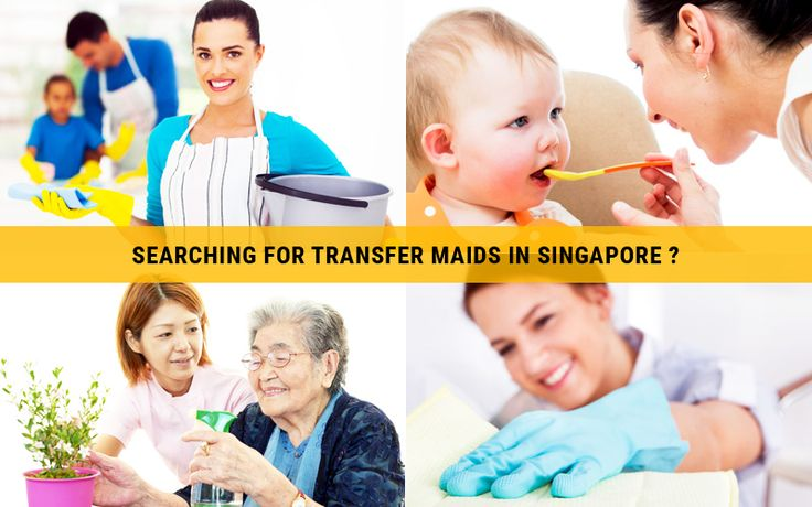Housemaid Agency portal has all the Transfer Maids in