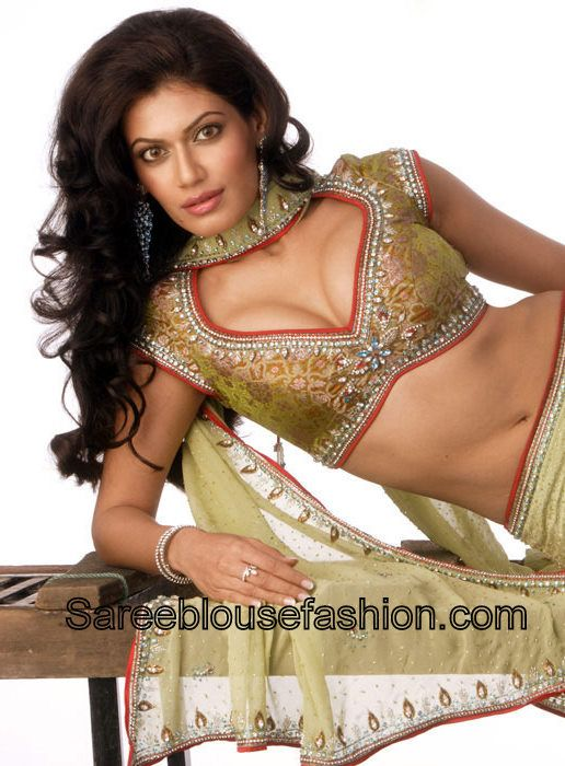 Payal_Rohatgi_Cap_Sleeves_Saree_Blouse