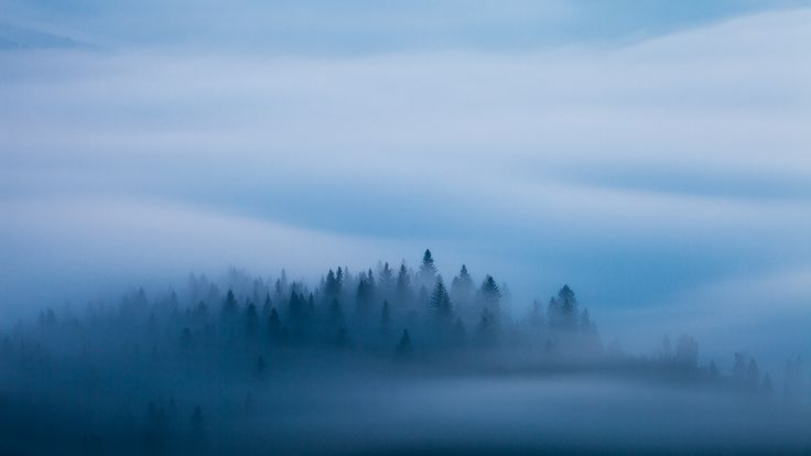 Misty Dreaming on Behance