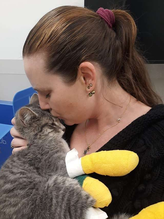 Cat Who Survived Wildfire Never Thought He D See His Mom Again Pets Cats Losing A Pet