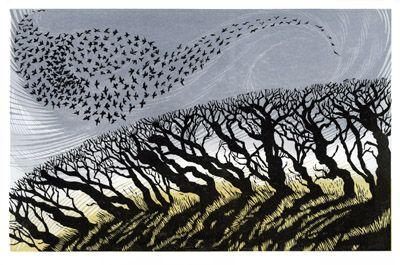 Niki Bowers - November Starlings