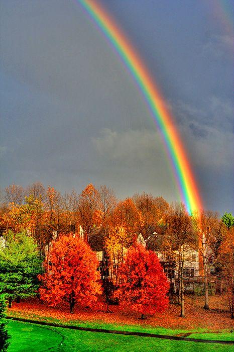 Wonderful picture by Bidyottam MittraAutumn Photos, Rainbows Connection, Rainbows Pictures, Bidyottam Mittra, Rainbowsgod Promis, Fall Rainbows, Beautiful Rainbows, Rainbows God, Wonder Pictures