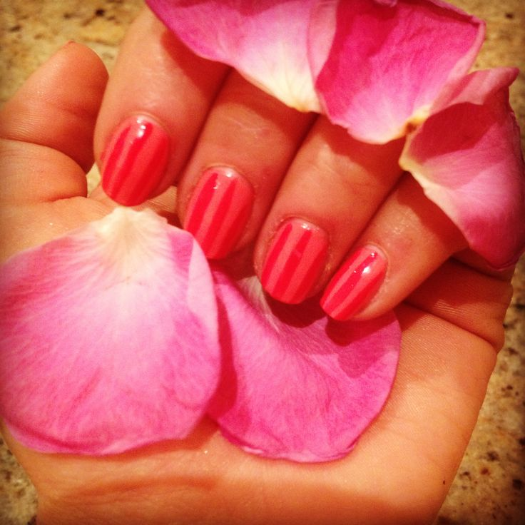 nails and roses. pink stripes for valentines day