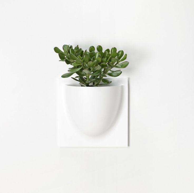 Image of Vertiplant - White
