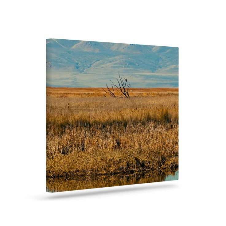 "Sylvia Coomes ""Reflective Landscape"" Blue Brown Canvas Art"