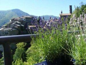 """Per la tua """" vacanza su misura"""" nella Riviera dei Fiori, prenota con Liforyou.it: il portale specializzato per la Liguria  -  www.liforyou.it"""