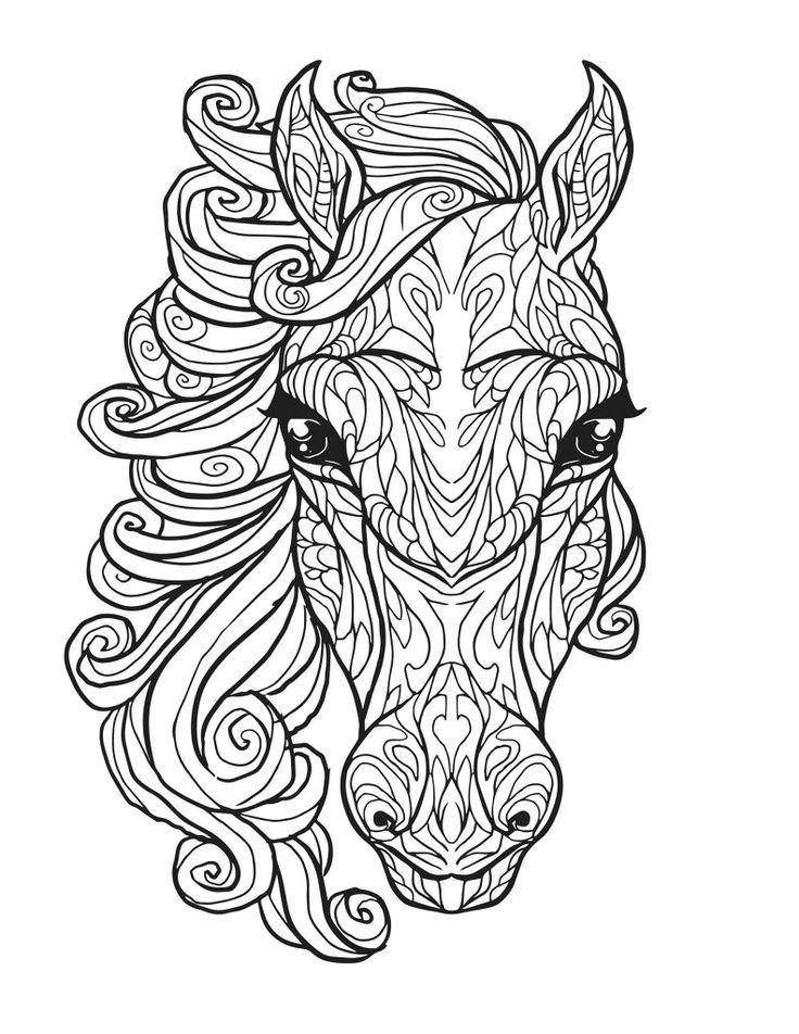 Mejores 19 imágenes de caballos en Pinterest | Caballos, Coloración ...