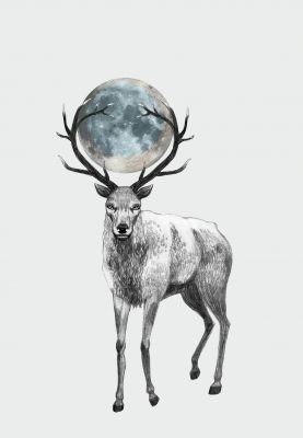grafika Blue Moon // Tiri riri