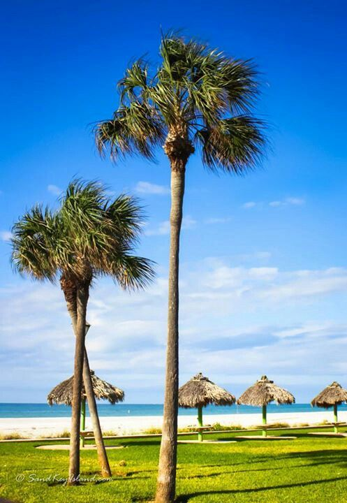 Clearwater Florida. | Absolutely loved Clearwater when I went as a kid!