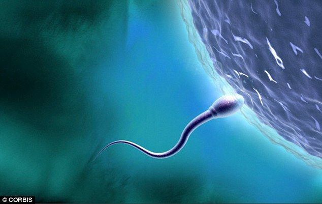 Men who have casual sex 'produce better quality sperm and have faster orgasms'  Men who have sex with new partners are more likely to reach orgasm faster and will produce better quality sperm, a new study by scientists at The College of Wooster in Ohio found