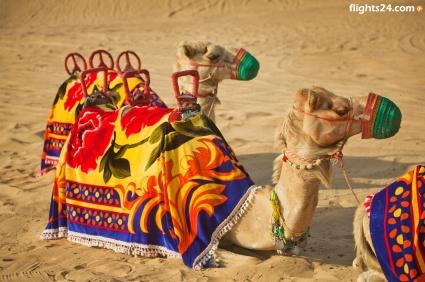 desert: Dubai Vacations, Places, Vacations Www Flights24 Com
