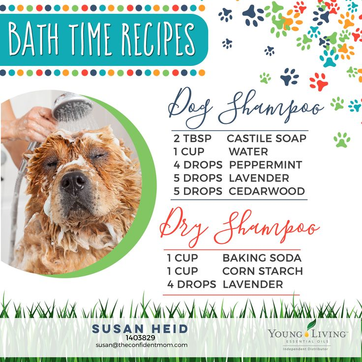 Natural products for your dog's bath time: DIY wet and dry shampoo recipes with Young Living essential oils