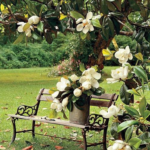 Best Magnolia Cottage Images Pinterest The Bride And Fabrics