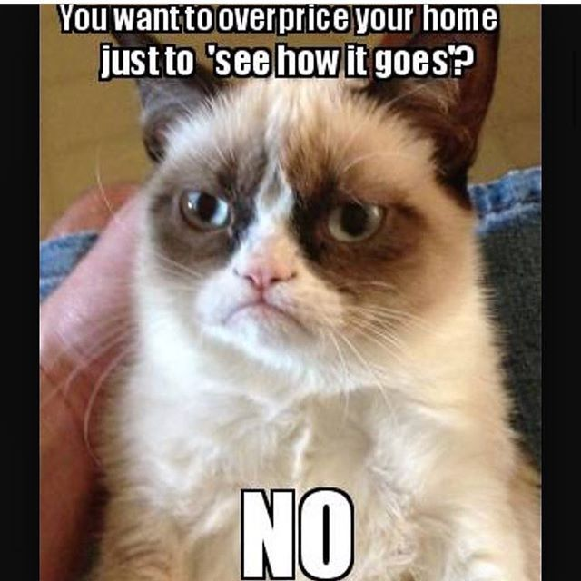 #🏡 #RealEstate #Saskatoon #YXE #Stoon #RealEstate #Realtors #Realtor #RealEstateAgent #Remax #RealEstateLife #RealtorLife #Selfie #RealEstateAgentLife #Winning #Listings #Selling #Buying #Love #Home #Property #ForSale #Possession #NewHome #Happy #meme #memes #realtormemes #realestatememe #lol #localrealtors - posted by Trusted Realty RE/MAX YXE https://www.instagram.com/remaxsaskatoon - See more Real Estate photos from Local Realtors at https://LocalRealtors.com