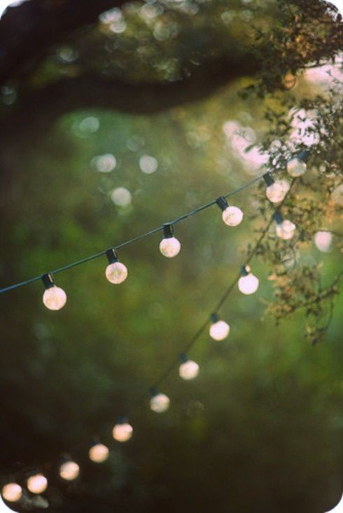 Garden Fairy Lights