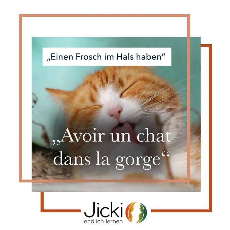 Die Katze Französisch