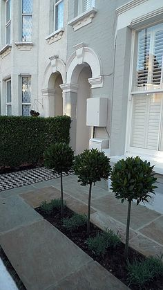 front garden victorian garden black and white mosaic tile path sandstone paving formal topiary with lavender balham clapham dulwich battersea london