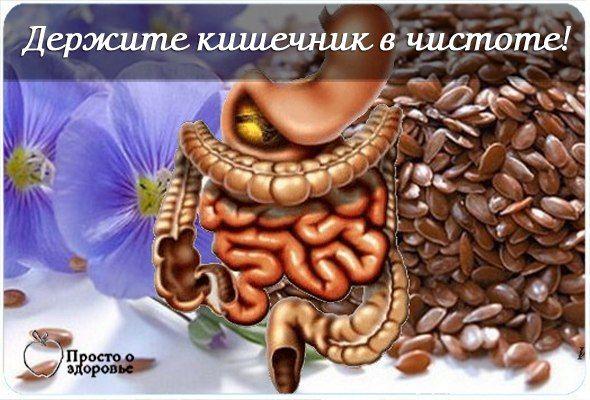 ДЕРЖИТЕ КИШЕЧНИК В ЧИСТОТЕ!«Генеральную уборку организма» нужно начинать с пищеварительного тракта. И вот почему. Дело в том, что в толстом кишечнике постоянно оседают не переварившиеся остатки пищи и…