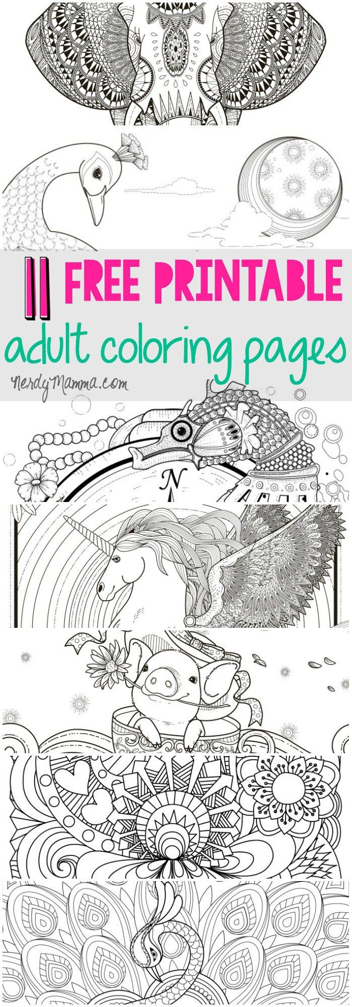 Coloring pages starfish intermediate - 11 Free Printable Adult Coloring Pages