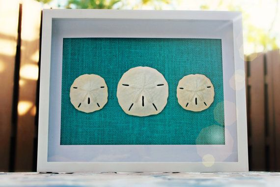 NEW BLUE Burlap Sand Dollar Wall Art White by FloridaSandDollarArt