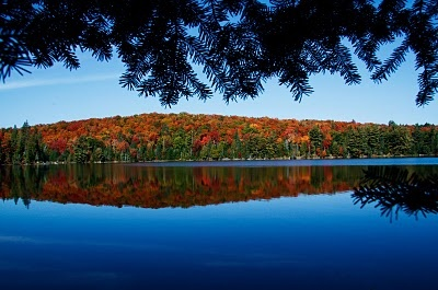 123 Best Camping Images On Pinterest Ontario Parks Lake
