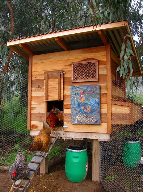 79 best images about chicken coops and runs on pinterest for Fancy chicken coops for sale