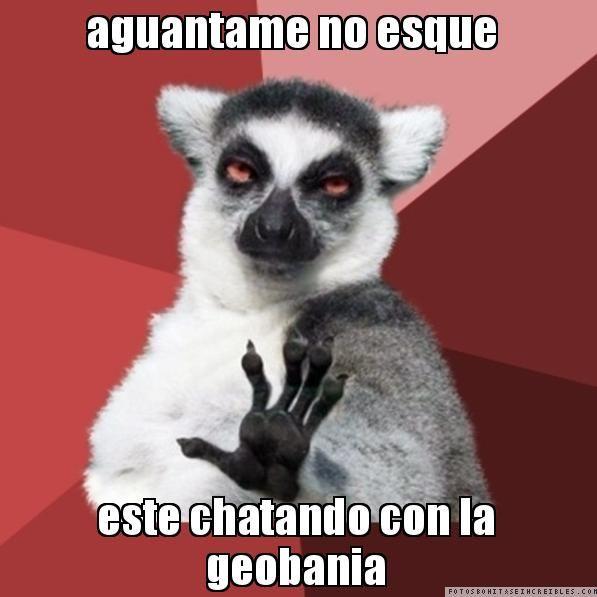 aguantame no esque  este chatando con la geobania - Chill Out Lemur | Crear memes y fotos divertidas para compartir - Descargar gratis memes