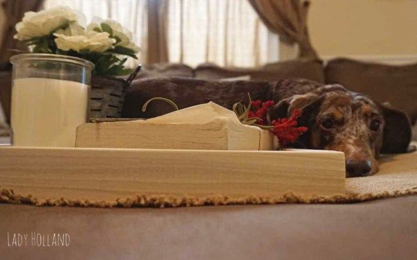 Creating A Simple Vignette For Your Ottoman Dachshund Vignettes Simple