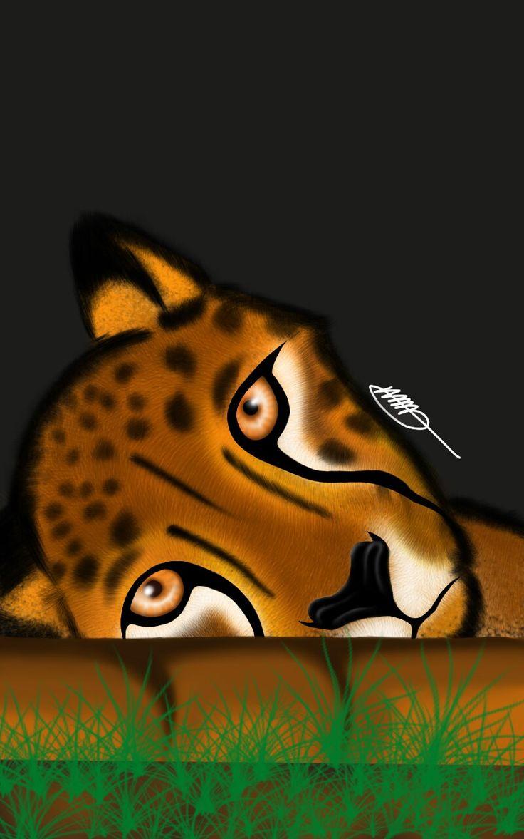 Cheetah: An animal study, on furr and eyes