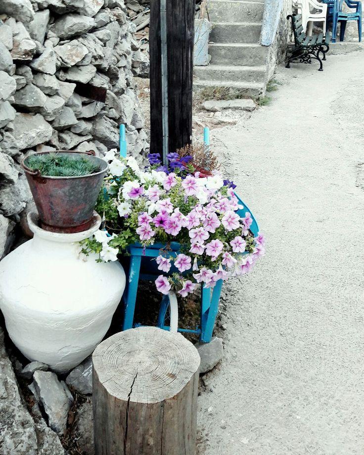 Flowers village greek island chios