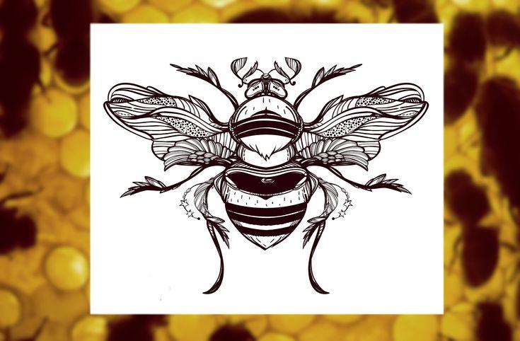 Beetle Set by katja.gerasimova on @creativemarket