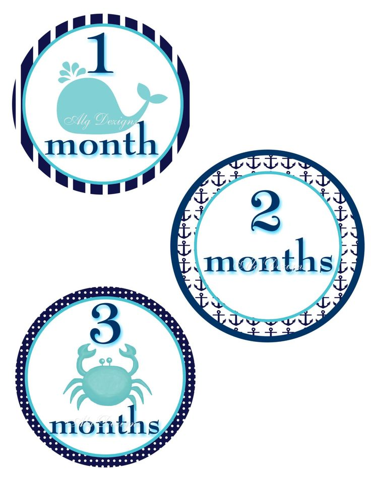 Nautical Whale and Crab Baby Monthly Milestone Stickers 12 month Stickers Free Shipping in the United States by ALGDezigns on Etsy