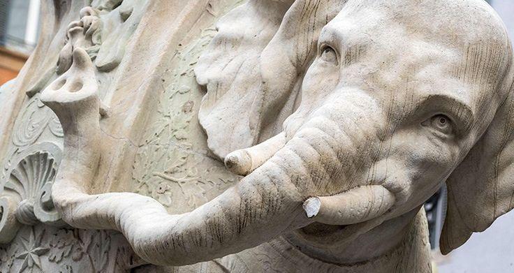 Elefante Piazza della Minerva