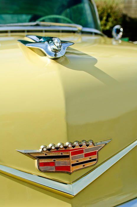 209 best automobile typography  u0026 logos images on pinterest