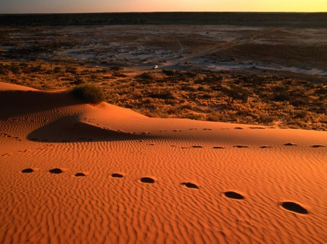 The Simpson Desert, Big Red - awesome