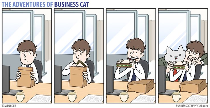 The Adventures of Business Cat — (via Business Cat - Sandwich)