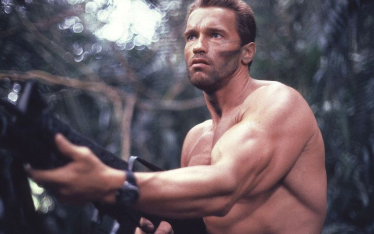 Arnold Schwarzenegger HD Wallpaper from our Celebrities Wallpapers Wide collection ready to download only for FREE.