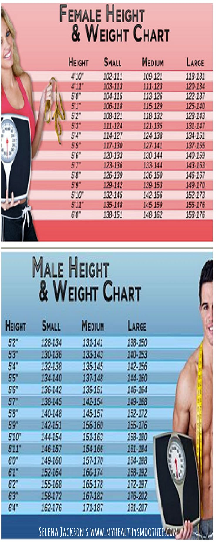 In recent years we have seen two extremes among women when weight is considered. Some women dieting excessively and some women taking pride with being excessively heavy. Namely, finding a stable middle is still the best option for any woman.  Check out the chart and see where you stand and what your ideal weight should be.