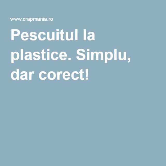 Pescuitul la plastice. Simplu, dar corect!
