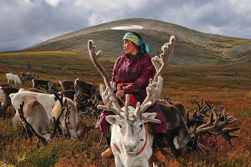 Mongolia woman on reindeer. I love this photograph - it looks like a painting and deserves to be the cover of a book. :)