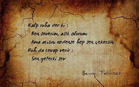 SEMSİ TEBRİZİ
