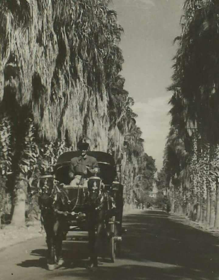Mersin 1940 lar kışla caddesi. .