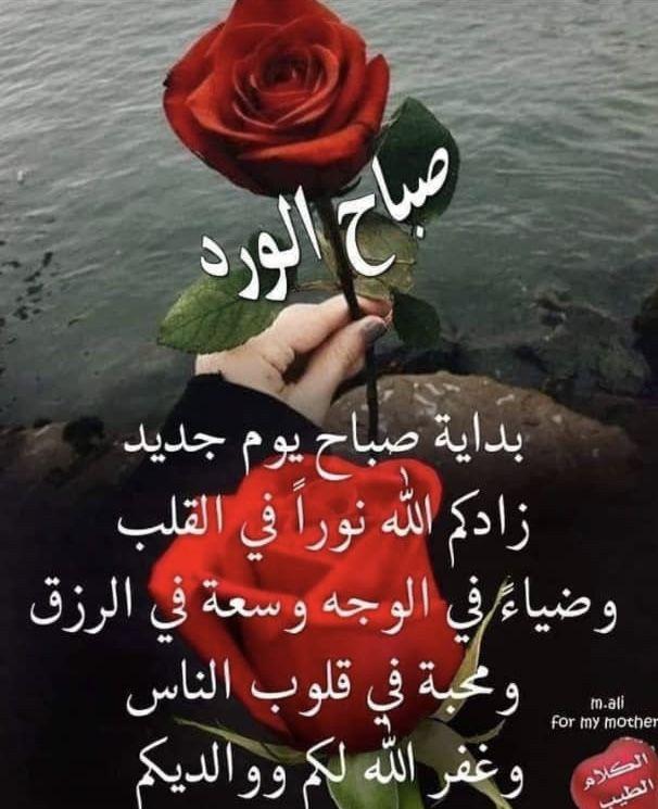أسرار عن معنى اسم لانا Lana في علم النفس وصفاتها موقع مصري In 2021 Love My Husband Fb Quote Art Of Love