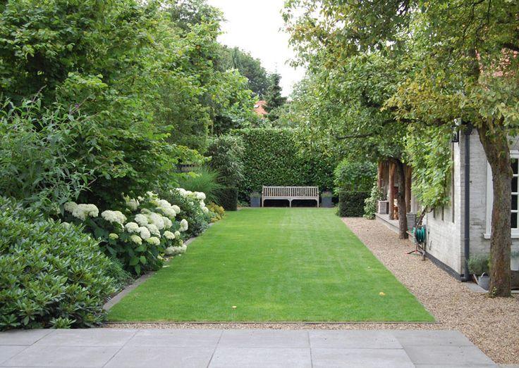 gras met bomen, rustige lijnen