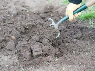 Prepare Soil Before Sowing Grass Seed